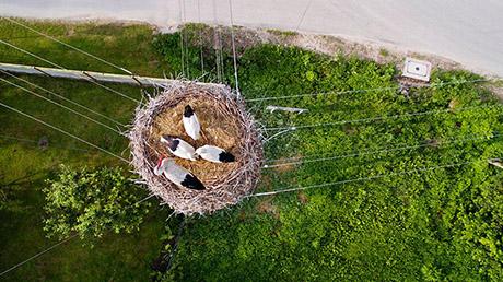 drone2015_fotos-10