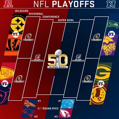 playoffs_NFL2015pp