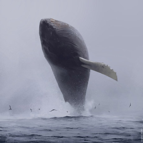 baleiashow