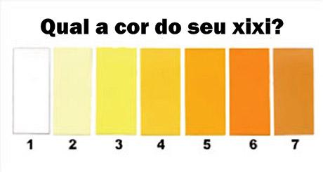 cor_da_urina