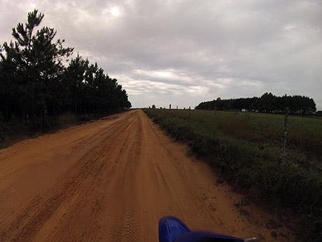 No começo da estrada para a Lagoa do Peixe.